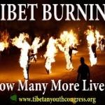 Torce umane in Tibet: un articolo da leggere e discutere