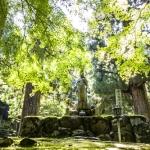 Fukui, un incantevole angolo di Giappone ancora da scoprire