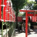Viaggi in Giappone 2016: ecco dove e quando Marco Restelli li presenta