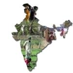 Ecologia e campagne in India: un video e un articolo per capirne di più