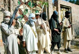 talebani pakistani