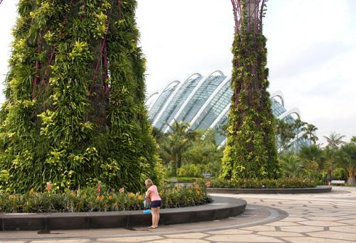 Donna di fronte a un supertree dei Gardens by the Bay a Singapore. Sullo sfondo, una mega-serra. Foto di Marco Restelli