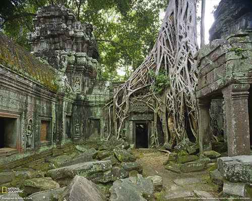 Il Ta Prohm ad Angkor, Cambogia