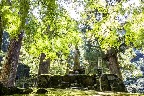 Giappone, parco dello Eiheiji. Foto di Elena Bianco