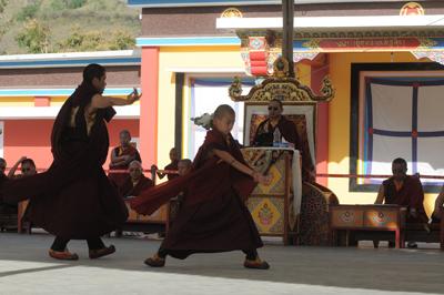 11 - Khamtrul Rinpoche (8)