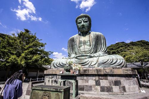 Amida Buddha (Daibutsu Sama) in meditazione, famoso capolavoro in bronzo del 1252, in un parco a Kamakura. Foto di Elena Bianco
