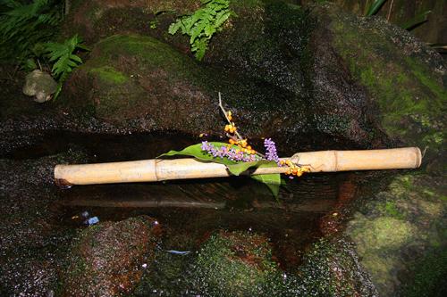 Composizione di bambù e fiori nel giardino della casa dei samurai Nomura, a Kanazawa. Foto di Elena Bianco