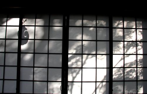 Ombre del giardino del monastero zen Tenryuji sulle porte scorrevoli di carta. Foto di Elena Bianco.